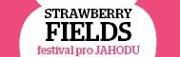 Strawberry Fields festival zítra ovládne Černý Most