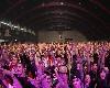 Hip Hop Allstars Live + křest 20ERS 21/11/08